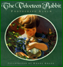 The Velveteen Rabbit - Illustrated By Donna Green